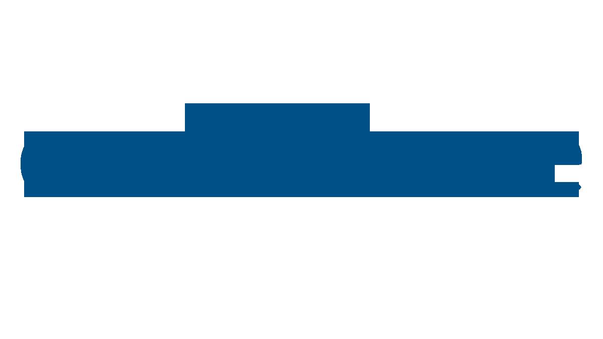 excellence-schriftzug